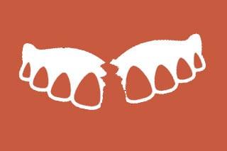 Denture Reapair icon